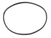 VW Side Window Seal - 113845321F