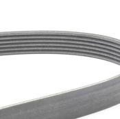 VW Drive Belt - Contitech 03G903137B