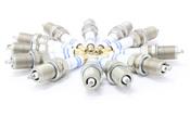 Mercedes Spark Plugs (Set of 12) - Bosch FR8DPP33X12