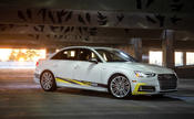 Audi Lowering Springs 034Motorsport - 0344041005
